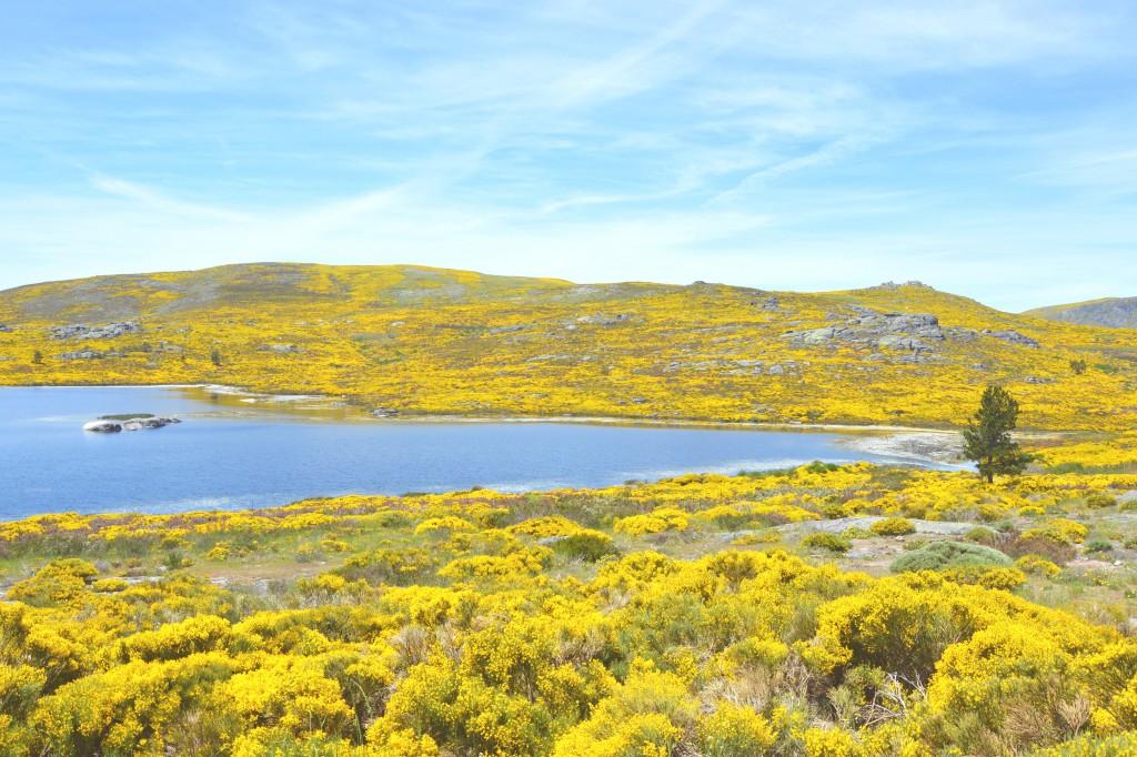 Wandelen in Portugal: De 4 mooiste natuurparken