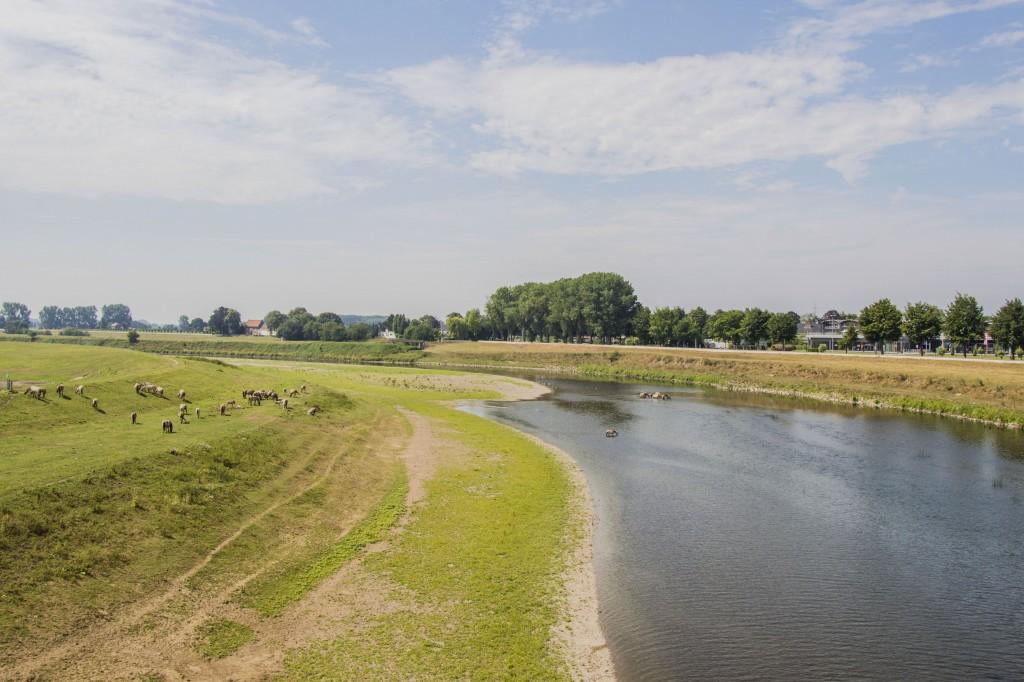 Cultuur en natuur in de Maasvallei, het onontdekte gebied op de grens van Limburg en België