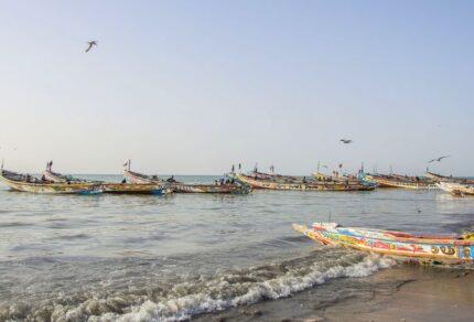 Reizen in Gambia: praktische informatie voor én tijdens je vakantie