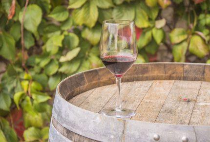Wijn proeven in de Alentejo
