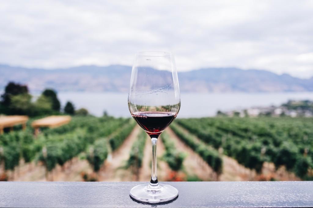 mooiste-wijngebieden-Europa