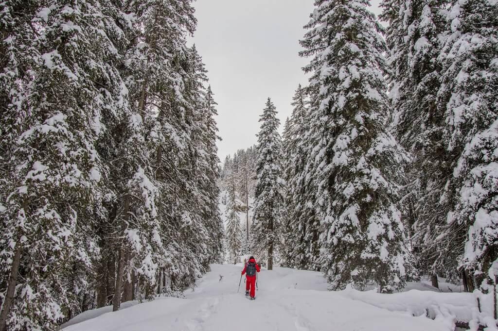 sneeuwschoenwandelen-in-oostenrijk