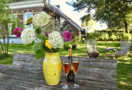 Leuke Airbnb huisjes in de natuur in Nederland