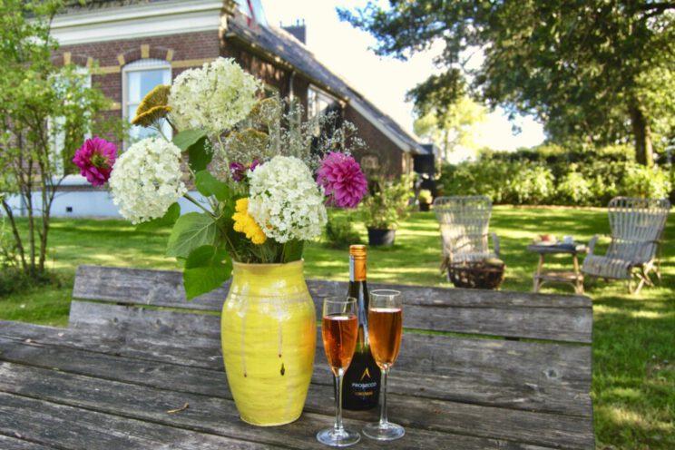 airbnb-huisjes-in-de-natuur-in-nederland