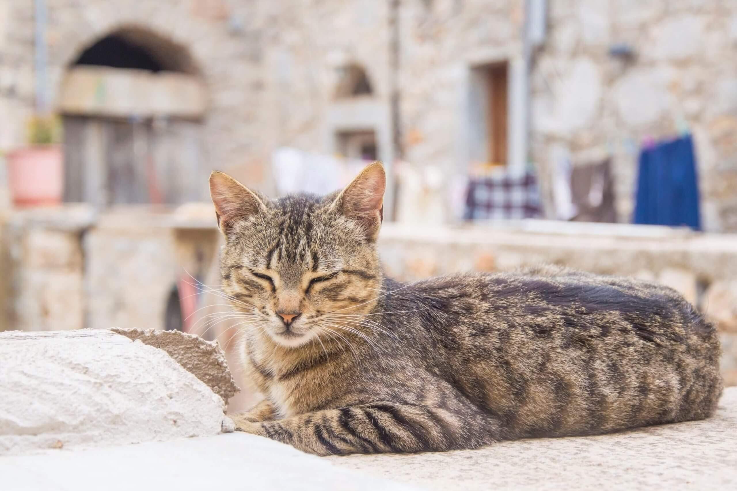 coronaregels-griekenland